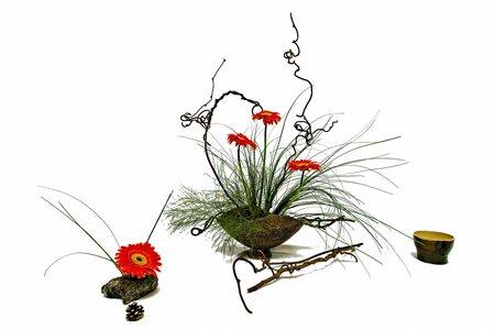 Přednáška - Kenzan a aranžování květinových ikeban
